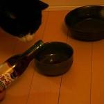 「ニャンニャンぬーぼー 赤」にチャレンジしてみた猫