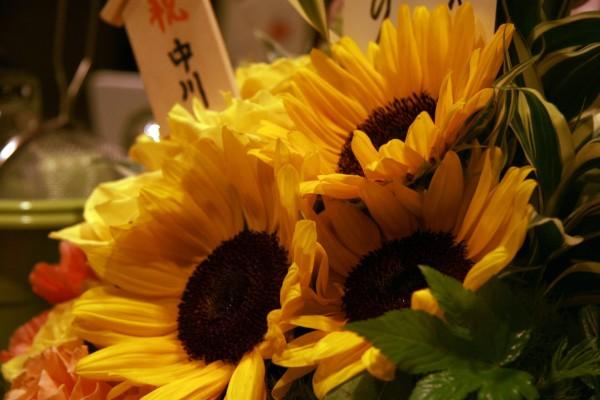 nakagawa_08