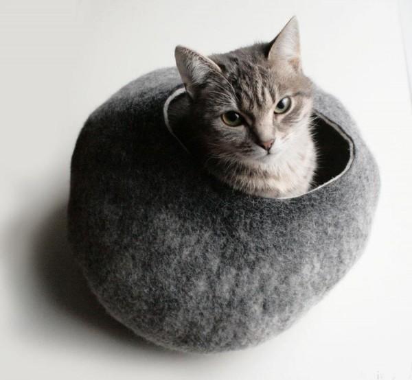 cathouseの画像