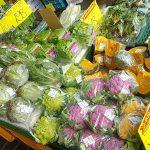 八百屋・遠慶(えんけい)は野菜も果物も種類豊富で激安。昔ながらの市場のような雰囲気が楽しくて、ついつい、あれもこれもと買いたくなってしまいます