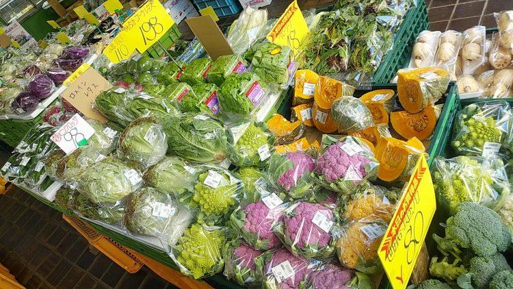 遠慶に並ぶ色とりどりの新鮮野菜