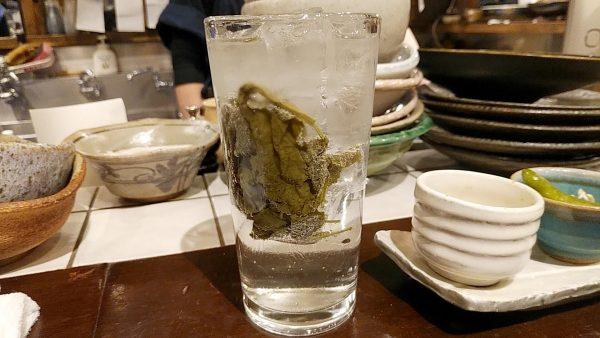 hitohiraの画像
