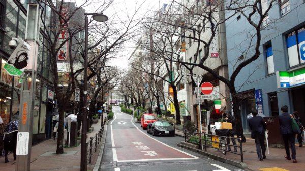 nozawadooriの画像