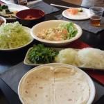子供でも食べやすいランチパーティーに最適なタコス&サルサ